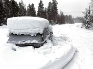 138337-medium-01_stranded-how-to-survive-snow-winter